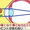 10日で老眼回復!目エクササイズのやり方・方法&食べ物(もずく&紫芋)衝撃速報アカルイミライ9月9日
