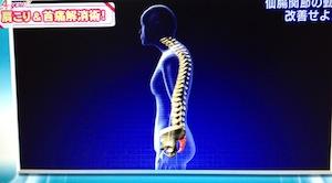 肩こり&首痛の原因!ストレートネック改善方法/治し方【L4YOU 1月23日】
