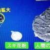 PM2.5を防ぐN95マスクの効果&中国大気汚染粒子予測【Nスタ】