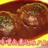 黄金伝説 さば味噌缶煮込みハンバーグレシピ【森崎友紀 2月28日】