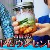 NHKあさイチ ヤムウンセン風(春雨)ジャーサラダレシピ【1月23日】